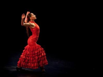 Flamenco bailaora