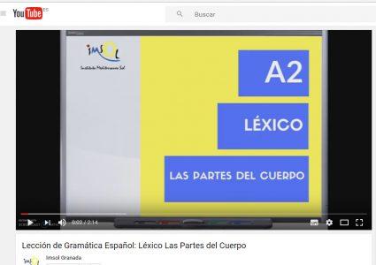 Lecciones de gramática y vocabulario