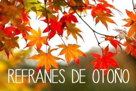 Autumn proverbs