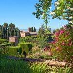 la-leyenda-de-la-rosa-de-alhambra-450x300